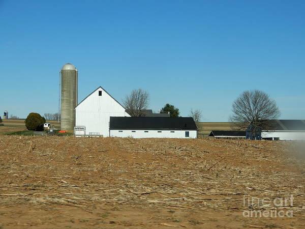 Amish Farm Days Art Print