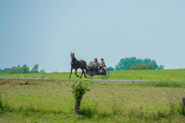 Wall Art - Photograph - Amish Horse And Buggy - Lancaster County Pennsylvania by Bill Cannon