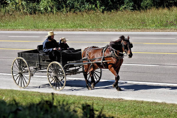 Wall Art - Photograph - Amish Horse And Wagon 2 by John Trommer