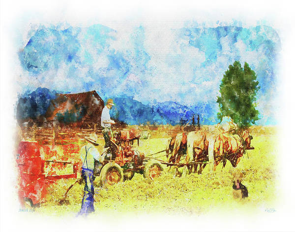 Digital Art - Amish Life by Mark Allen