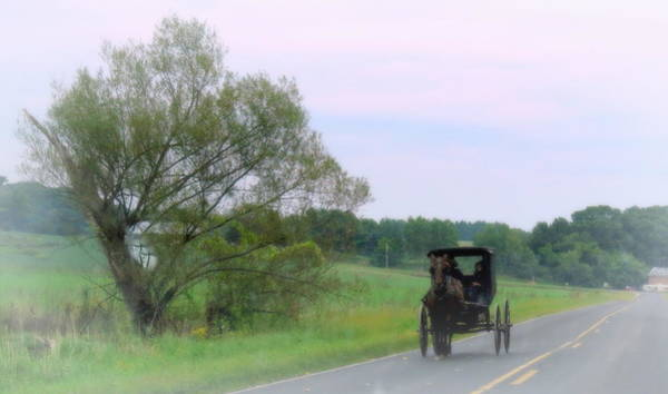 Vernon County Photograph - Amish Means Of Travel by Kay Novy