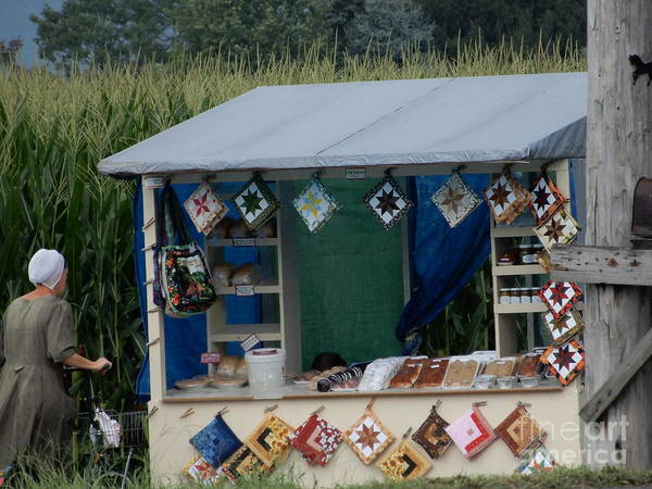 Photograph - Amish Roadside Stand by Christine Clark