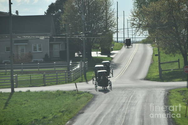 Photograph - Amish Visiting Day Buggies by Christine Clark