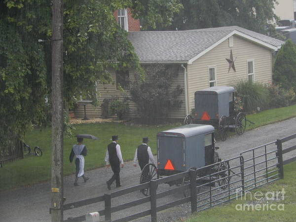 Photograph - Amish Youth Walk To Church by Christine Clark