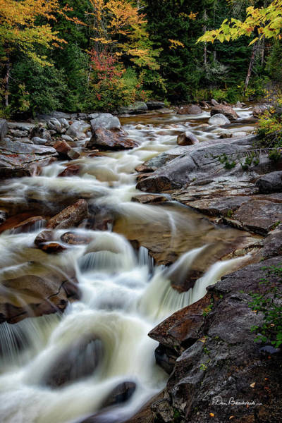 Photograph - Ammonoosuc Cascade 2313 by Dan Beauvais