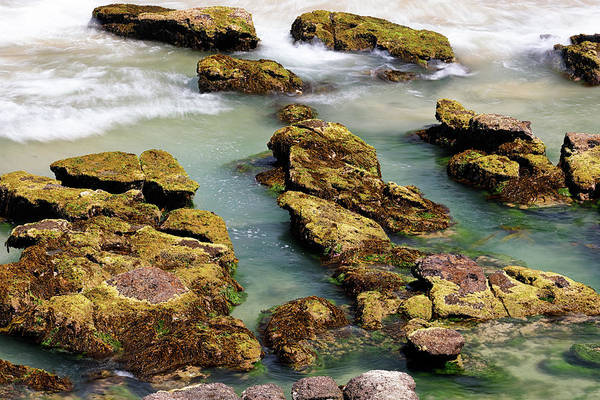 Photograph - Amongst The Rocks 1 by Nicholas Blackwell