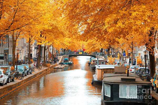 Travel Destinations Wall Art - Photograph - Amsterdam Autumn. Beautiful Places In by Skreidzeleu