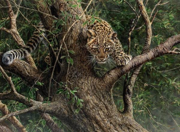 Painting - Amur Leopard Cub Climbing A Tree by Alan M Hunt