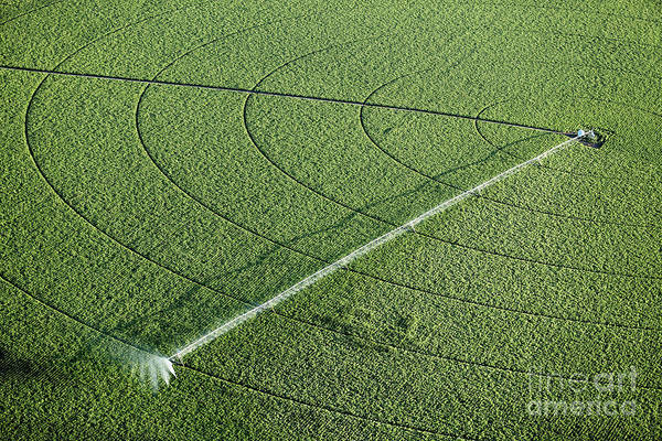 Wall Art - Photograph - An Aerial View Of An Agricultural by B Brown