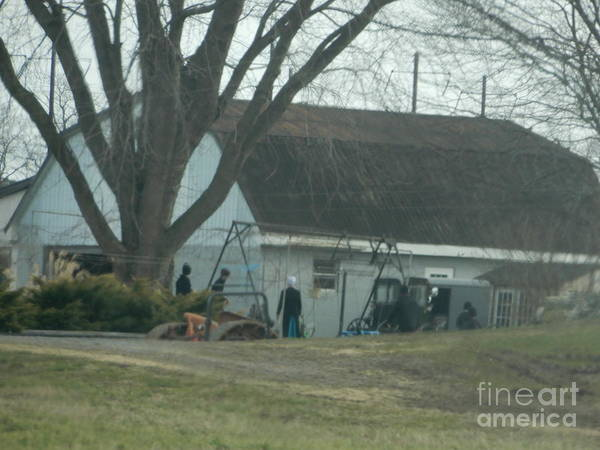 Photograph - An Amish Family Works On Their Farm by Christine Clark