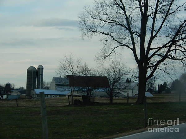 Photograph - An Amish Farm In Late Autumn by Christine Clark