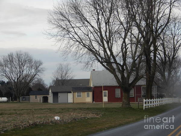 Photograph - An Amish Schoolhouse In Late Fall by Christine Clark