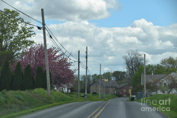 Photograph - An Amish Spring Drive by Christine Clark