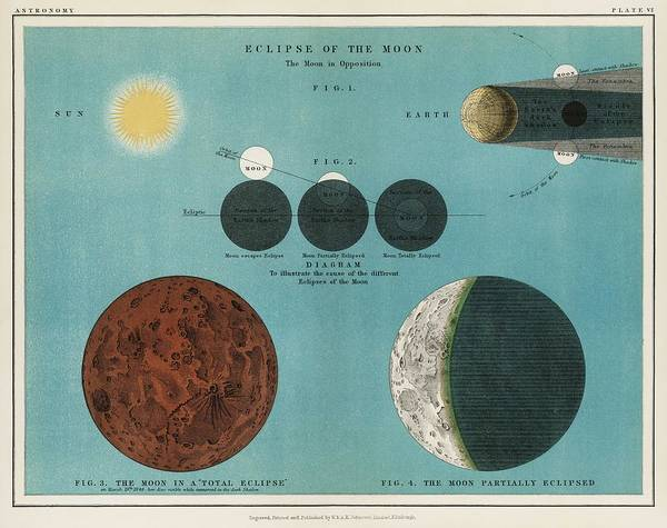 Wall Art - Painting - An Astronomy Lithograph The Eclipse Of The Moon Printed In 1908, An Antique Celestial Chart Of Phase by Celestial Images