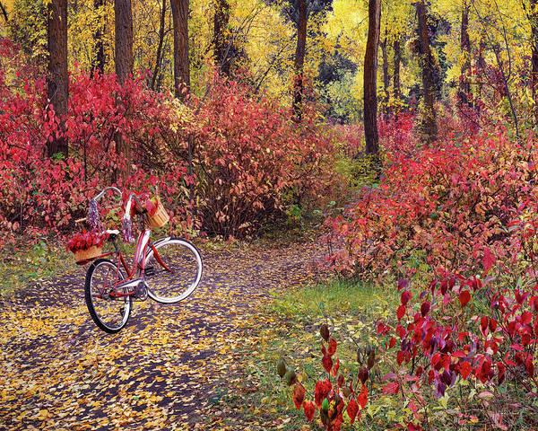 Wall Art - Photograph - An Autumn Bike Trek by Leland D Howard