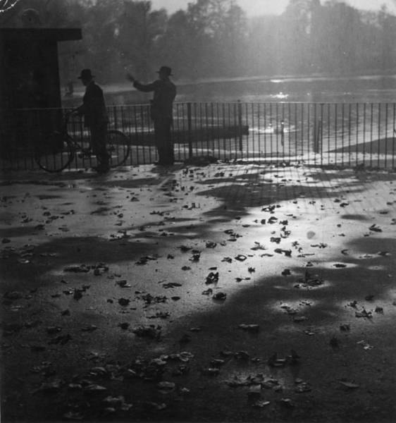 Photograph - An Autumn Day by Erich Auerbach