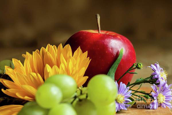 Photograph - An Autumn Gifts Still Life On The Blurred Background by Marina Usmanskaya