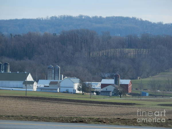 Photograph - An Evening View Of An Amish Farm by Christine Clark