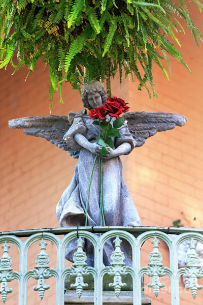 Photograph - An Offering From An Angel In New Orleans by John Rizzuto