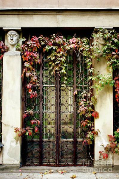 Wall Art - Photograph - An Old Doorway by Tom Gowanlock