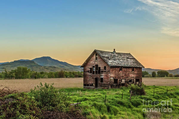 Wall Art - Photograph - An Old Homestead by Robert Bales