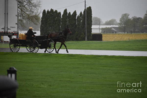 Photograph - An Open Buggy In Spring by Christine Clark