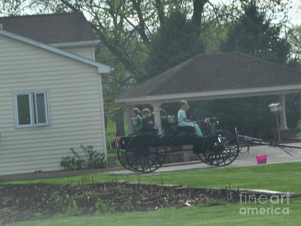 Photograph - An Open Family Buggy by Christine Clark