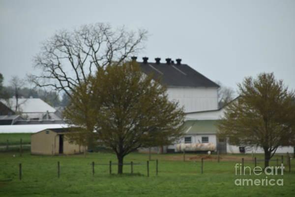 Photograph - An Overcast Spring Day On The Farm by Christine Clark