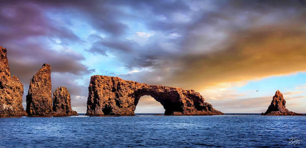 Photograph - Anacapa Arch Rock by Endre Balogh