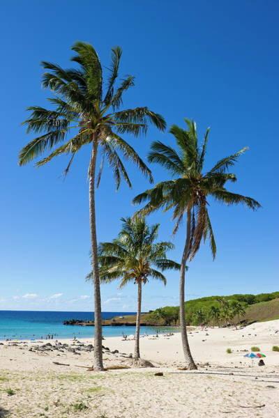 Distant Trees Wall Art - Photograph - Anakena Beach, The Islands White Sand by Gavin Hellier / Robertharding