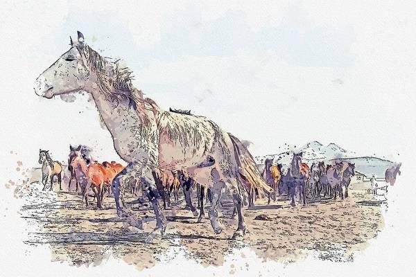 Wall Art - Painting - Anatolian Wild Horses -  Watercolor By Adam Asar by Adam Asar