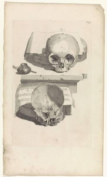 Liver Painting - Anatomical Study Of A Skull, Pieter Van Gunst, After Gerard De Lairesse, 1685 by Gerard de Lairesse