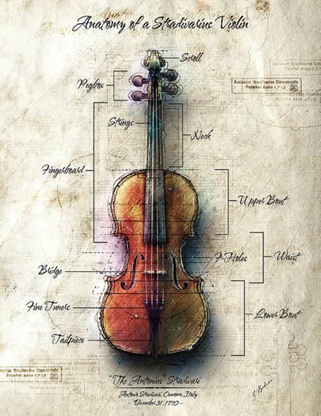 Wall Art - Digital Art - Anatomy Of A Stradivarius Violin by Gary Bodnar