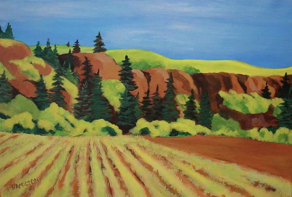 Barley Painting - Ancient Grain Field by Sarah Hamilton