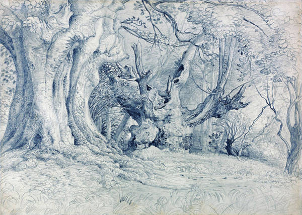 Wall Art - Painting - Ancient Trees, Lullingstone Park - Digital Remastered Edition by Samuel Palmer