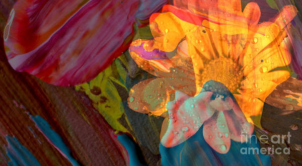 Wall Art - Photograph - And All Those Flowery Dreams Abstract by Jeff Swan
