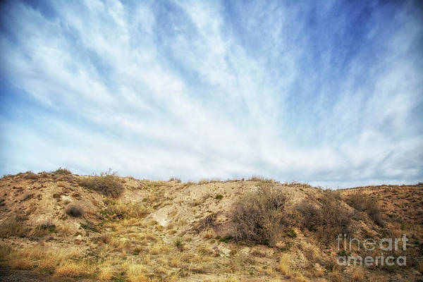 Photograph - And Like Our Noble Heroes by Natural Abstract Photography