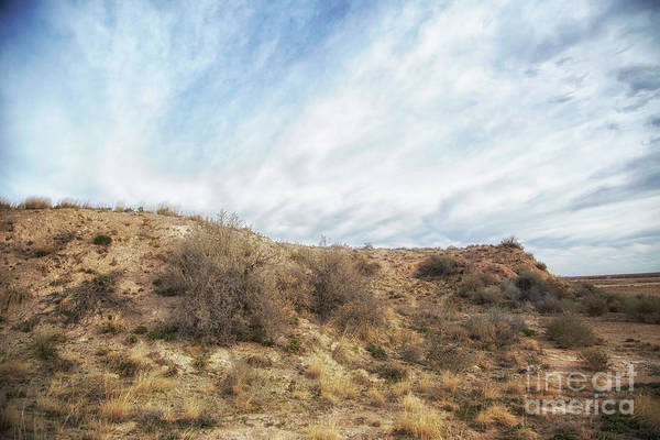 Photograph - And Live The Quiet Life by Natural Abstract Photography