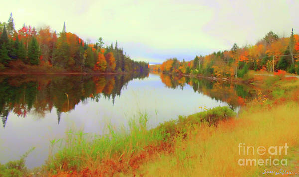 New Leaf Mixed Media - Androscoggin River, 13 Mile Woods by Susan Lafleur