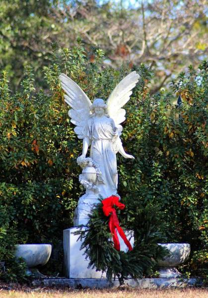 Photograph - Angel At Christmas by Cynthia Guinn