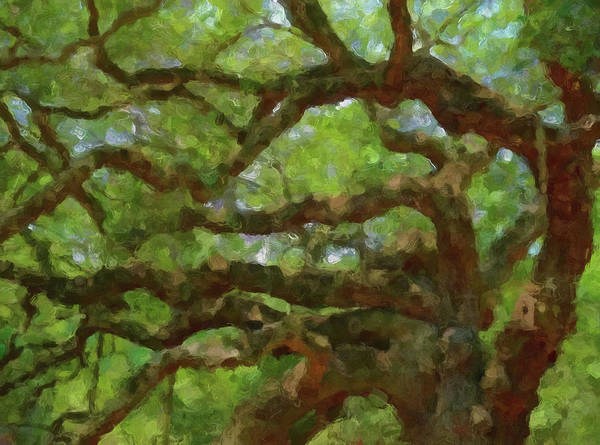 Painting - Angel Oak Branches by Dan Sproul