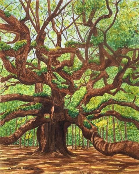 Angel Oak Painting - Angel Oak by Sharon Farber