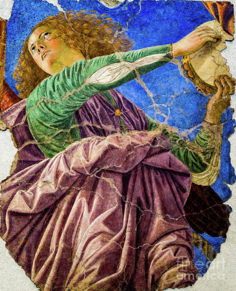 Painting - Angel Playing The Tambourine by Melozzo da Forti
