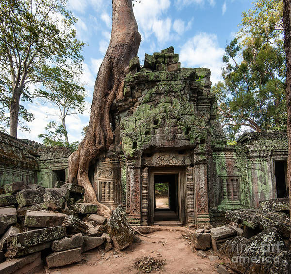 Angkor Wall Art - Photograph - Angkor Wat Cambodia. Ta Prohm Khmer by Banana Republic Images