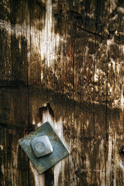 Photograph - Angled Bolt In Weathered Wood by Kae Cheatham