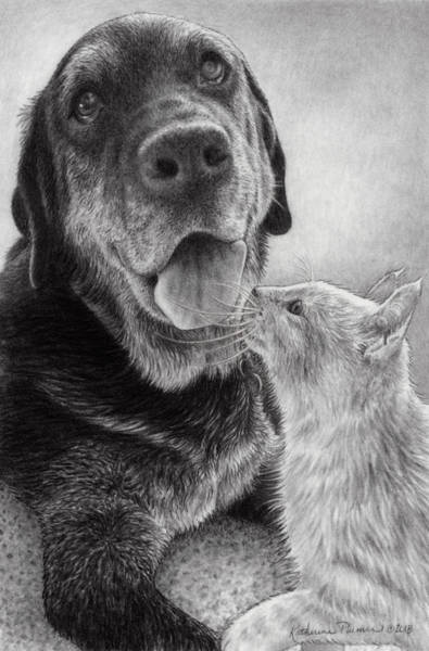 Mutt Drawing - Angus And Linus by Katherine Plumer