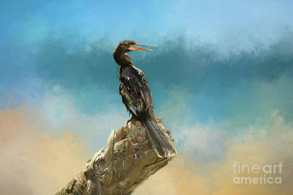 Wall Art - Photograph - Anhinga Digital Painting by Darren Fisher