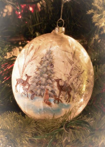 Photograph - Animal Christmas by Allin Sorenson