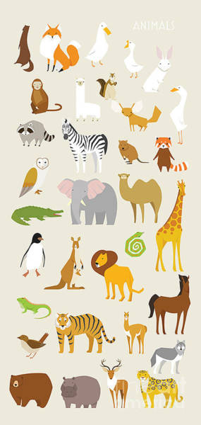 Wall Art - Digital Art - Animal Set Vector Illustration Wildlife by Miniwide
