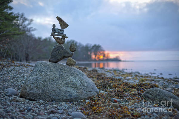 Sculpture - Animals by Pontus Jansson